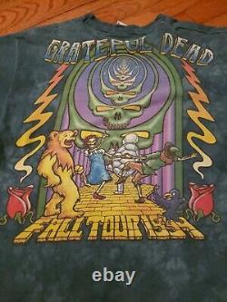 Vtg Grateful Dead 1994 Tour Wizard Of Oz Shirt Liquid Blue Tye Dye Large beautif